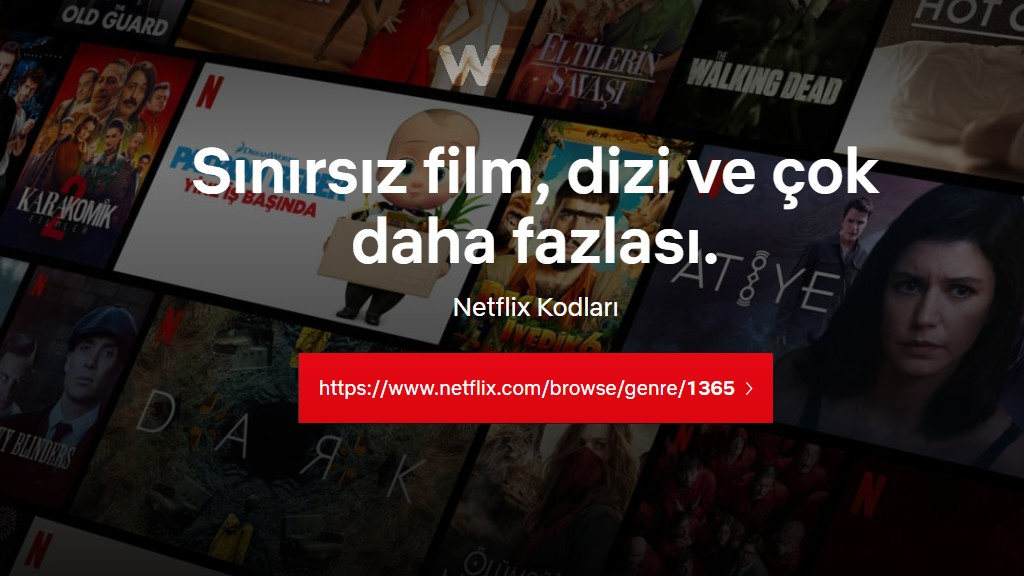 Netflix Kodları